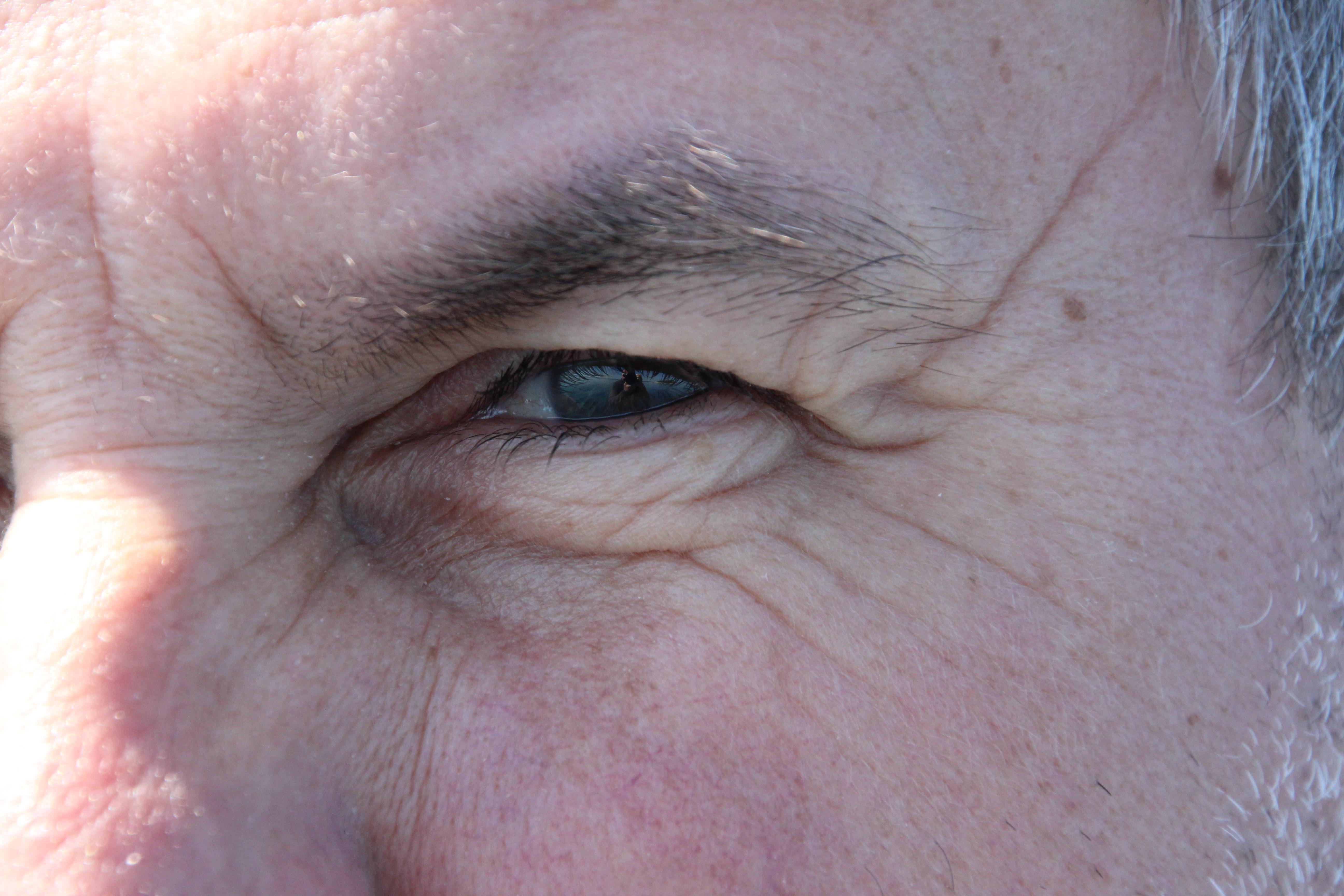 Bystré oko